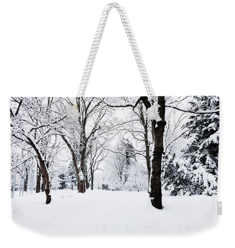 Snow Weekender Tote Bag featuring the photograph Frozen Tree On A Snow Field by Lightkey