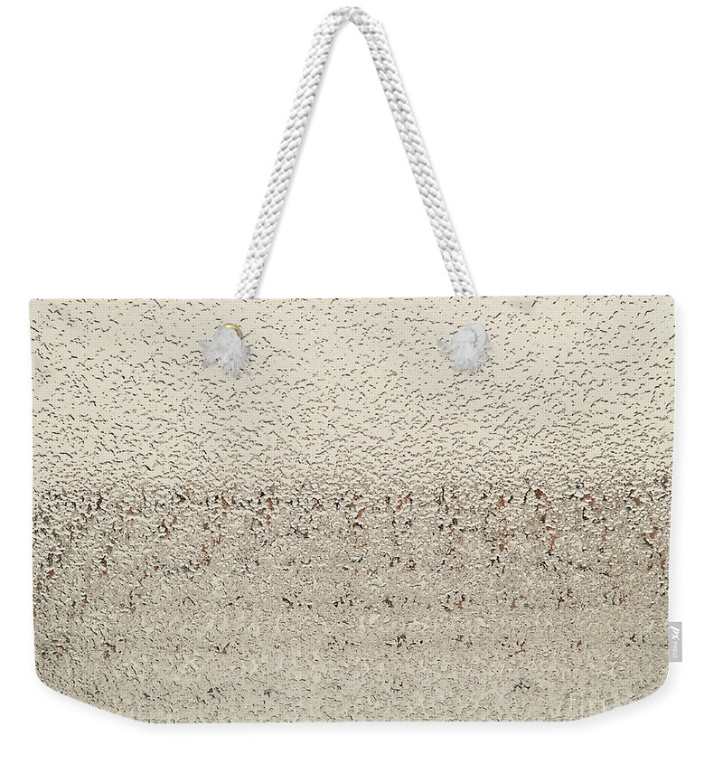 Photography Weekender Tote Bag featuring the photograph Frozen Window by Luc Van de Steeg