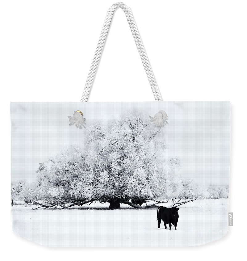 Winter Weekender Tote Bag featuring the photograph Frozen World by Mike Dawson