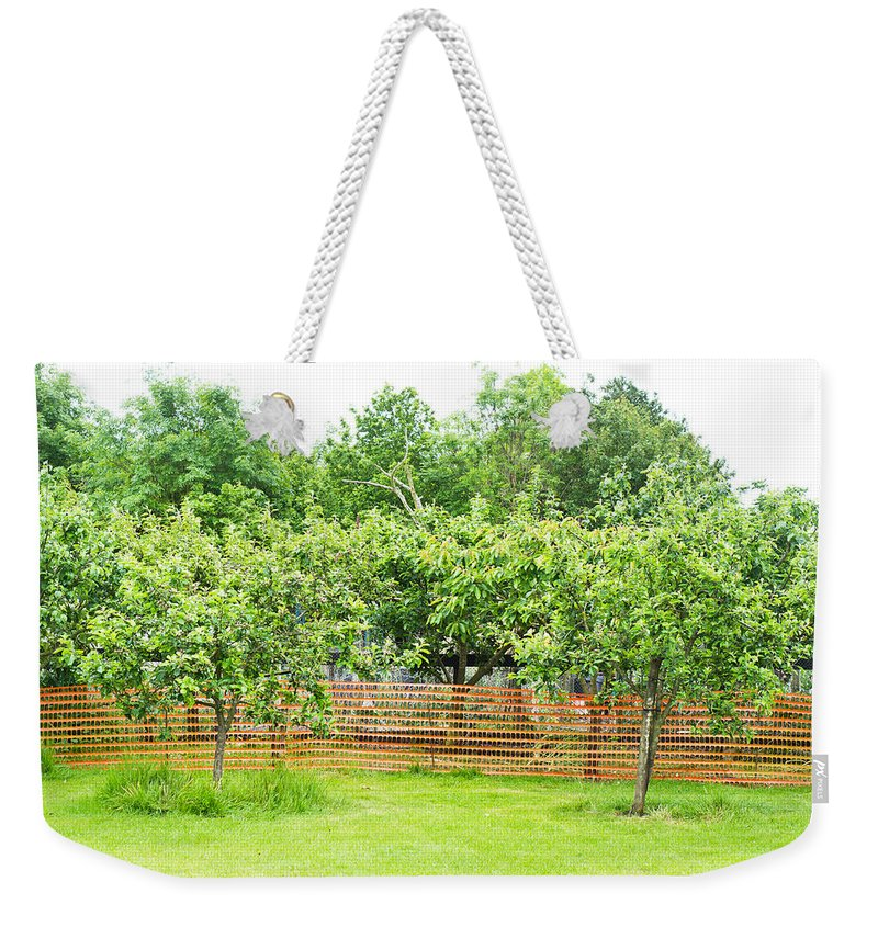 Agricultural Weekender Tote Bag featuring the photograph Fruit Trees by Tom Gowanlock