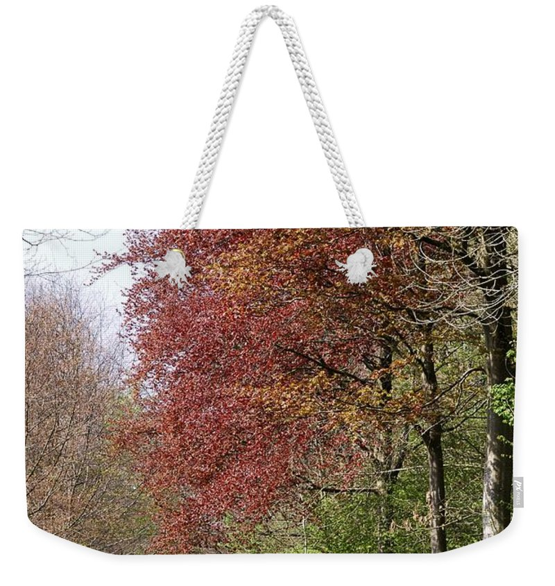 Fulfilled Weekender Tote Bag featuring the photograph Fulfilled by Wendy Wilton