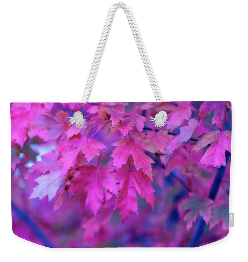 Tranquility Weekender Tote Bag featuring the photograph Full Frame Of Maple Leaves In Pink And by Noelia Ramon - Tellinglife