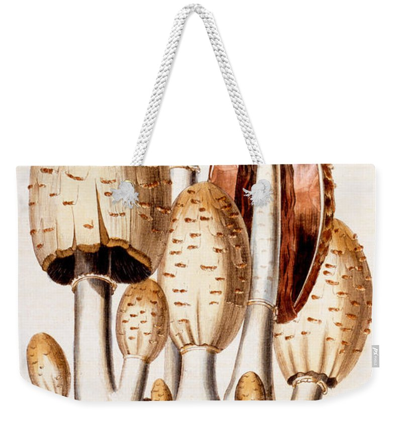 Mushroom Weekender Tote Bags