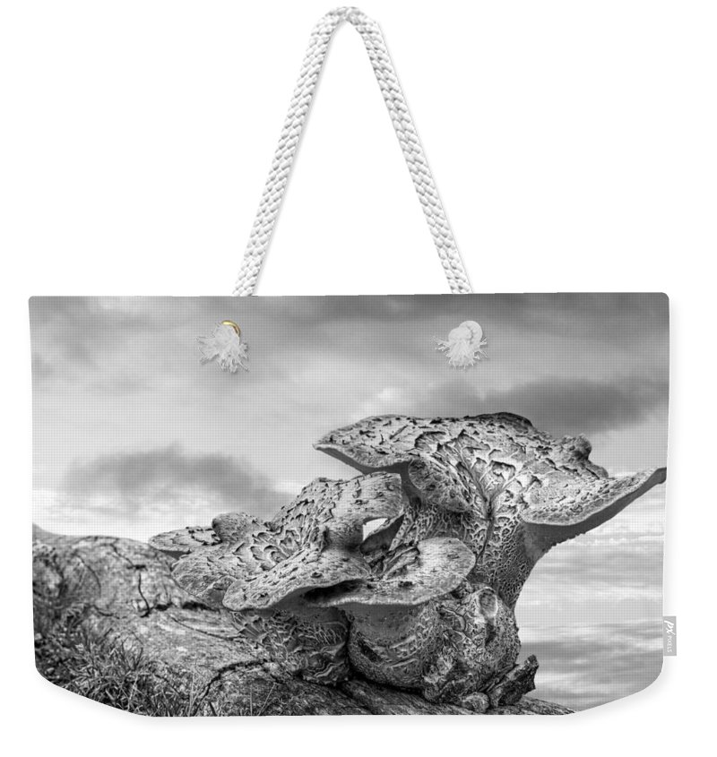 Tree Fungus Weekender Tote Bag featuring the photograph Funky Fungi Black And White by Gill Billington