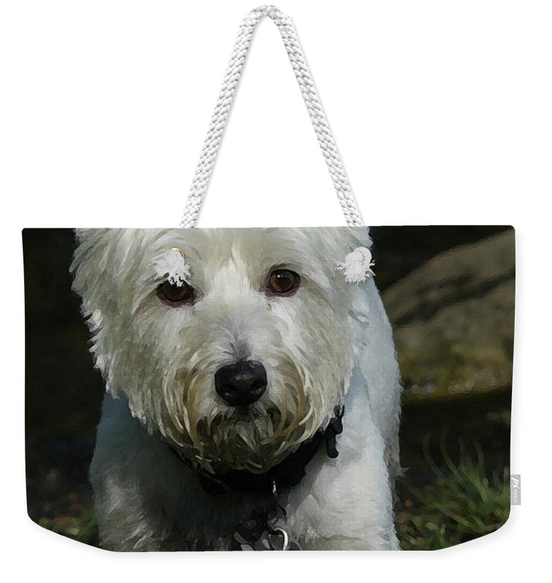 Dog Weekender Tote Bag featuring the photograph Fuzzy by Karol Livote