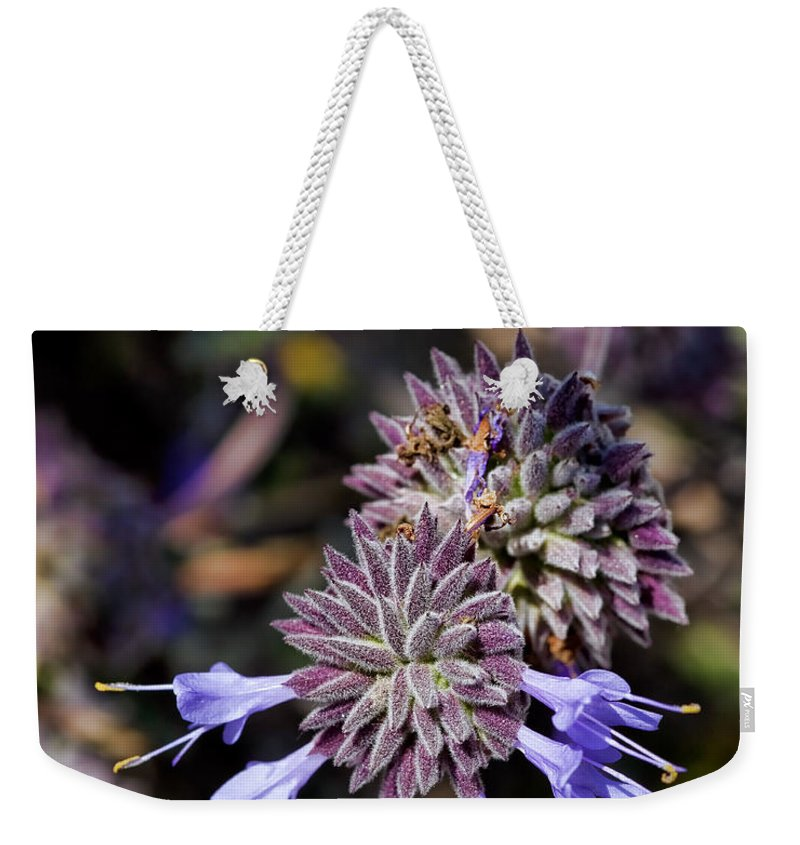 Salvia Apiana Weekender Tote Bag featuring the photograph Fuzzy Purple 1 by Kelley King