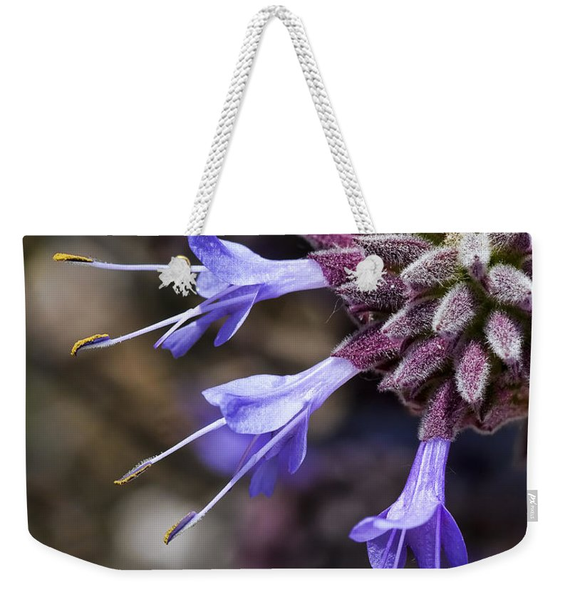 Purple Flowers Weekender Tote Bag featuring the photograph Fuzzy Purple Detail 1 by Kelley King
