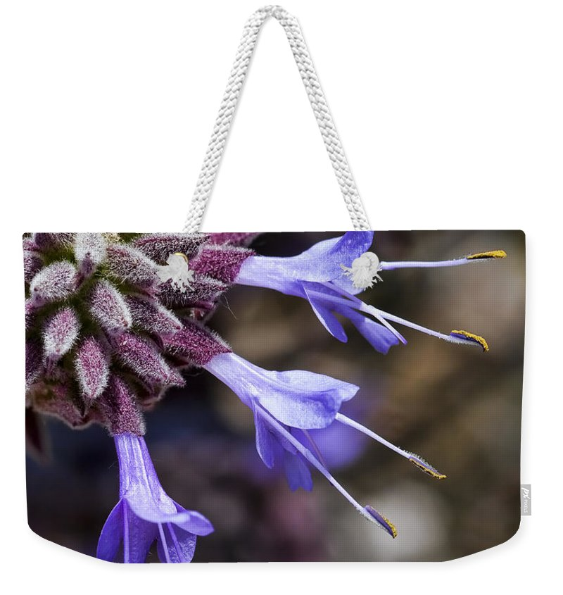 Macro Flowers Weekender Tote Bag featuring the photograph Fuzzy Purple Detail 2 by Kelley King