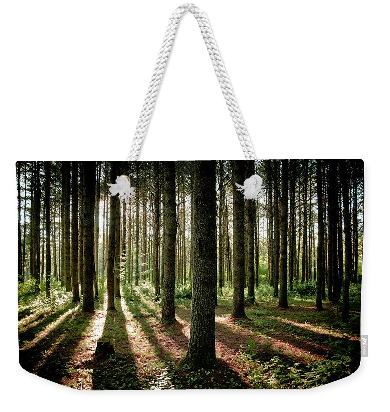 Tranquility Weekender Tote Bag featuring the photograph Galarneau by Guillaume Seguin