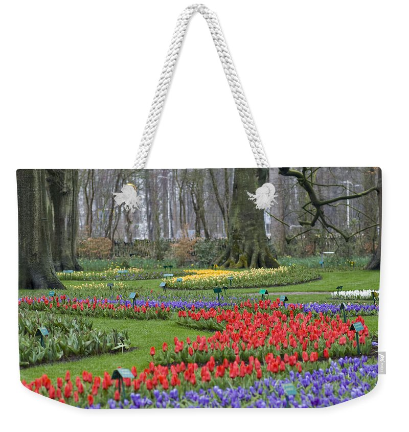 Blooming Weekender Tote Bag featuring the photograph Garden Of Eden by Juli Scalzi