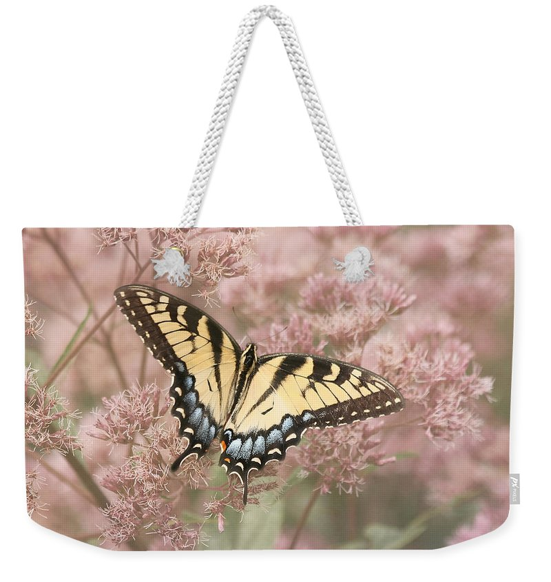 Tiger Swallowtail Butterfly Weekender Tote Bag featuring the photograph Garden Visitor - Tiger Swallowtail by Kim Hojnacki