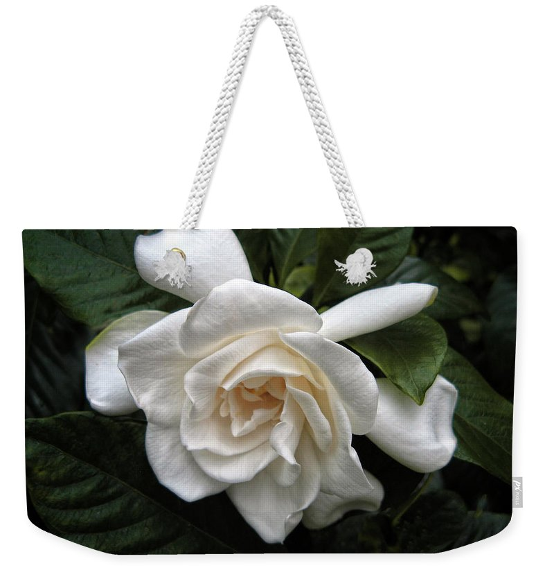 Flower Weekender Tote Bag featuring the photograph Gardenia by Jessica Jenney