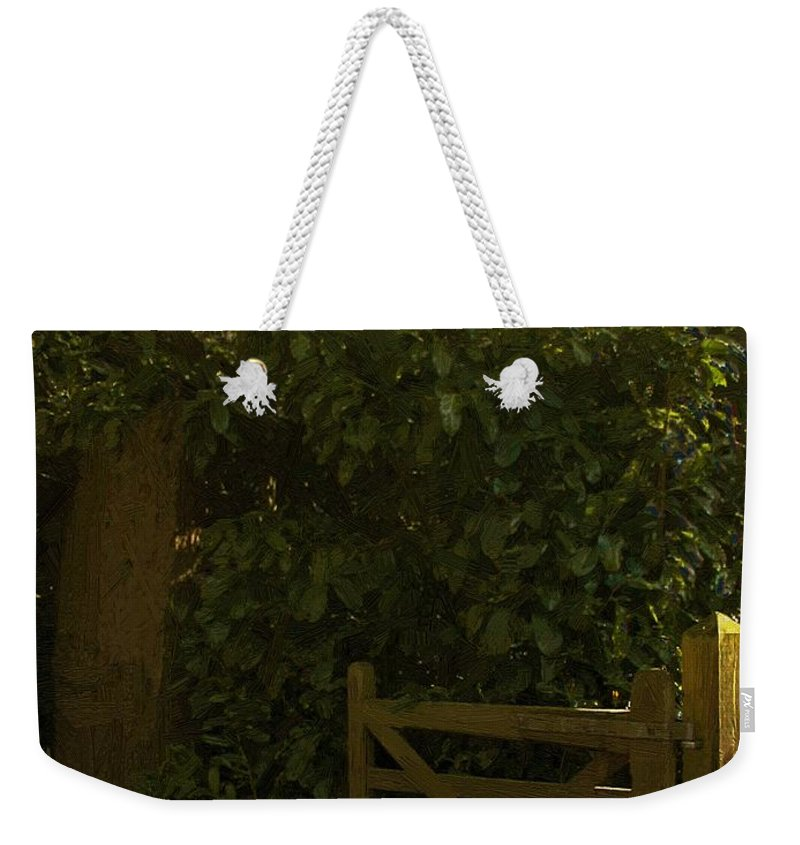 Forest Weekender Tote Bag featuring the painting Gate To Nowhere by RC DeWinter
