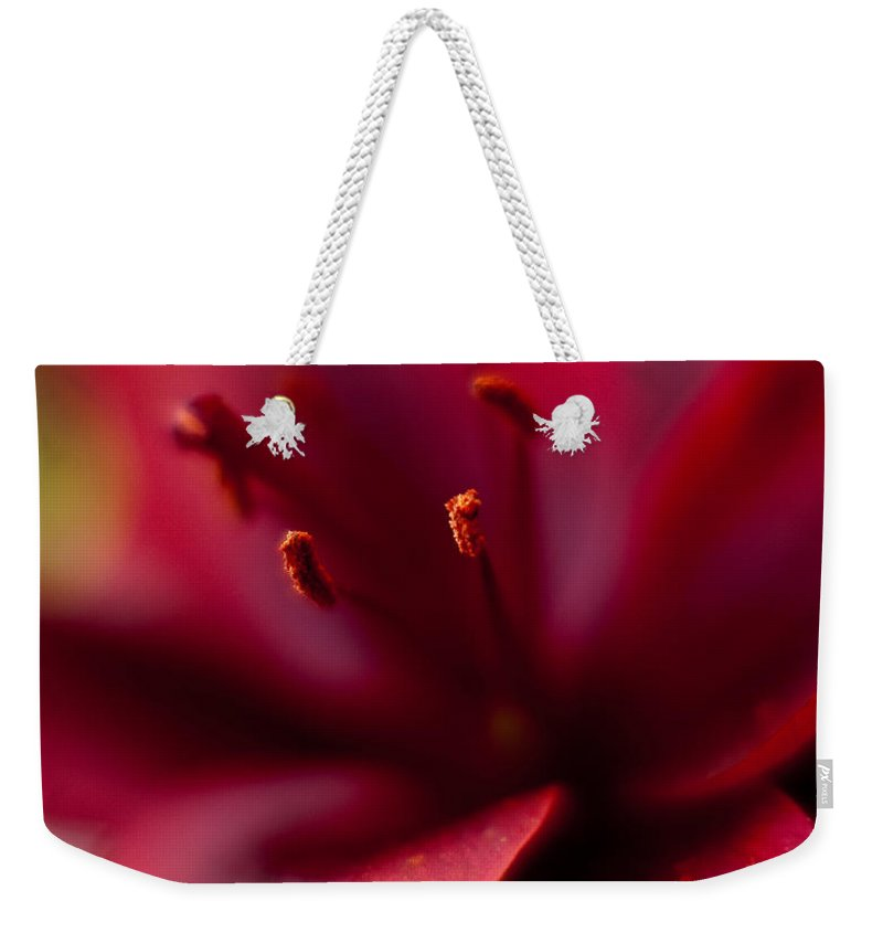 Red Weekender Tote Bag featuring the photograph Gazer Red Angles by Mike Reid