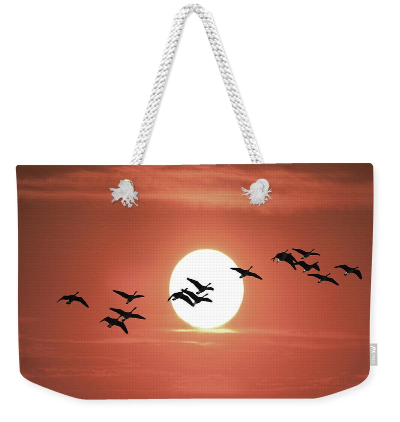 Art Weekender Tote Bag featuring the photograph Geese Against The Sun by Randall Nyhof