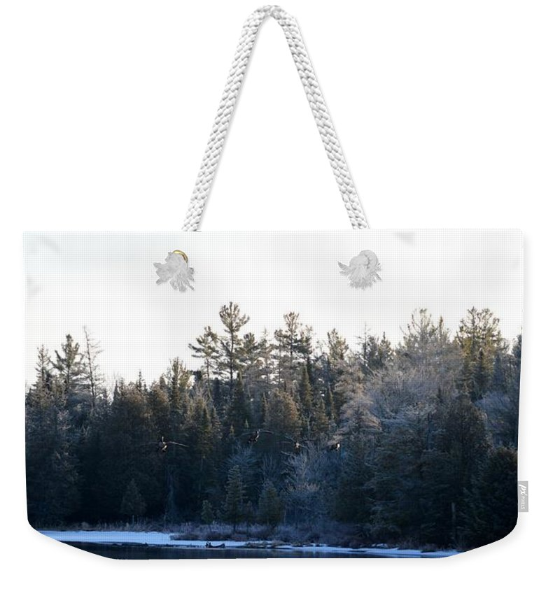 Geese Weekender Tote Bag featuring the photograph Geese by Thomas Phillips
