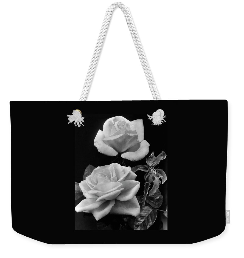 Flowers Weekender Tote Bag featuring the photograph 'george Arends' Roses by J. Horace McFarland