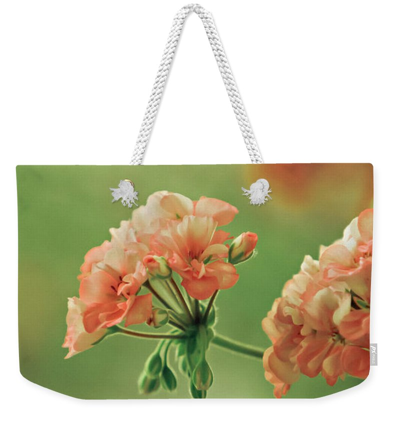 Geranium Weekender Tote Bag featuring the photograph Geranium by Dan Radi