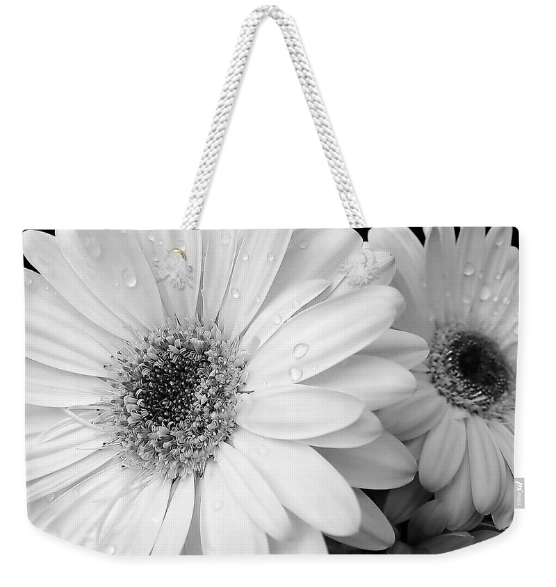 Daisy Weekender Tote Bag featuring the photograph Gerber Daisies In Black And White by Jennie Marie Schell