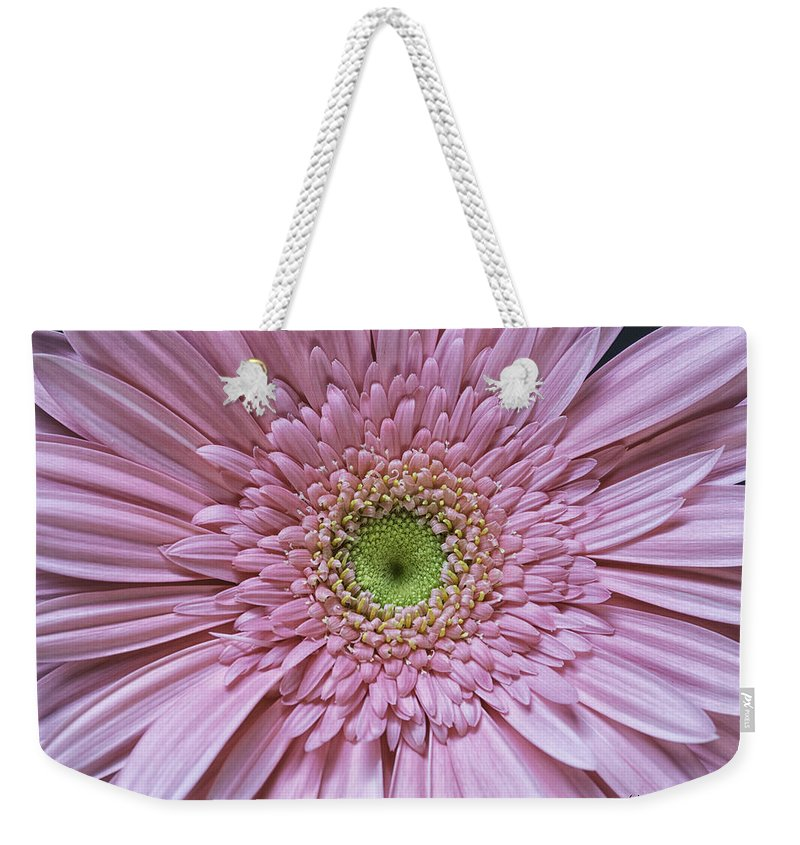 Flower Weekender Tote Bag featuring the photograph Gerber Daisy by Fran Gallogly