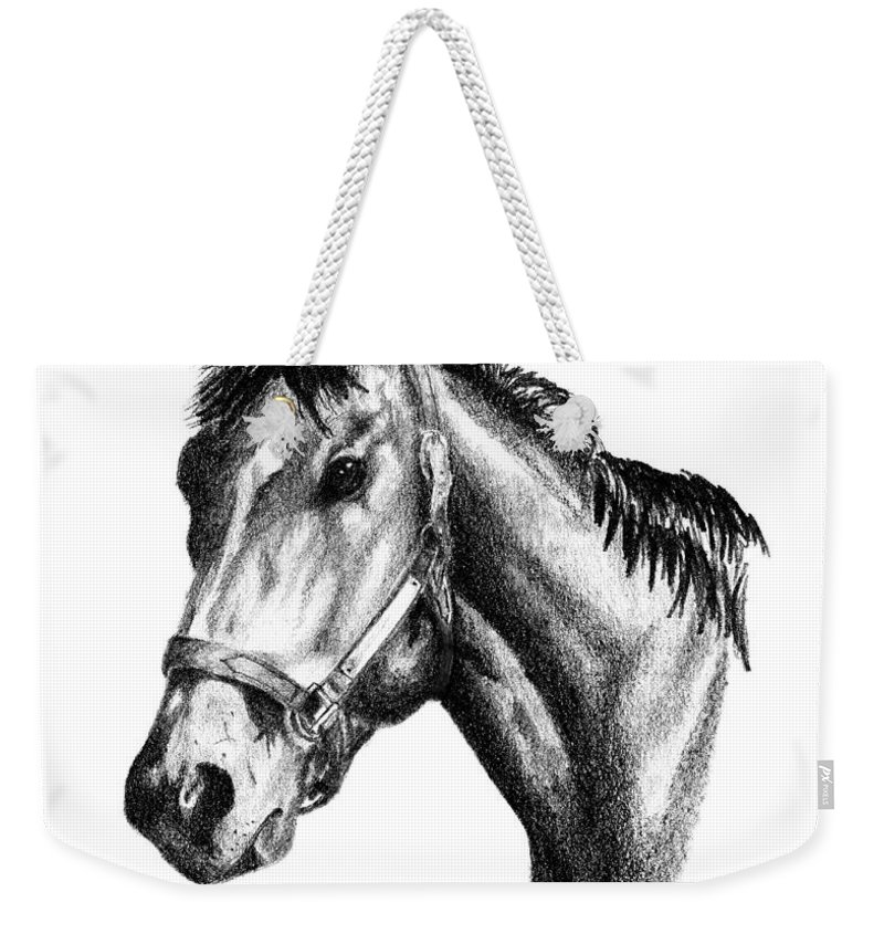 Thoroughbred Weekender Tote Bag featuring the drawing Ghazibella Thoroughbred Racehorse Filly by J M Lister