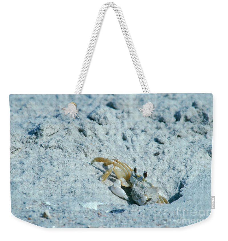 Ghost Crab Weekender Tote Bag featuring the photograph Ghost Crab by Millard H Sharp