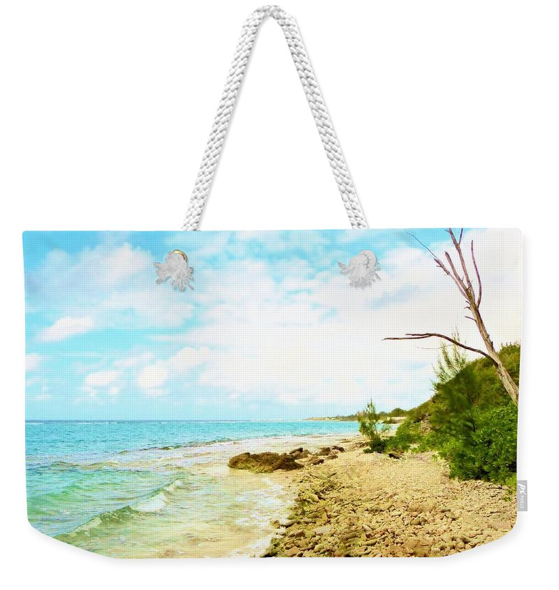 Color Weekender Tote Bag featuring the photograph Ghost Tree by Amar Sheow