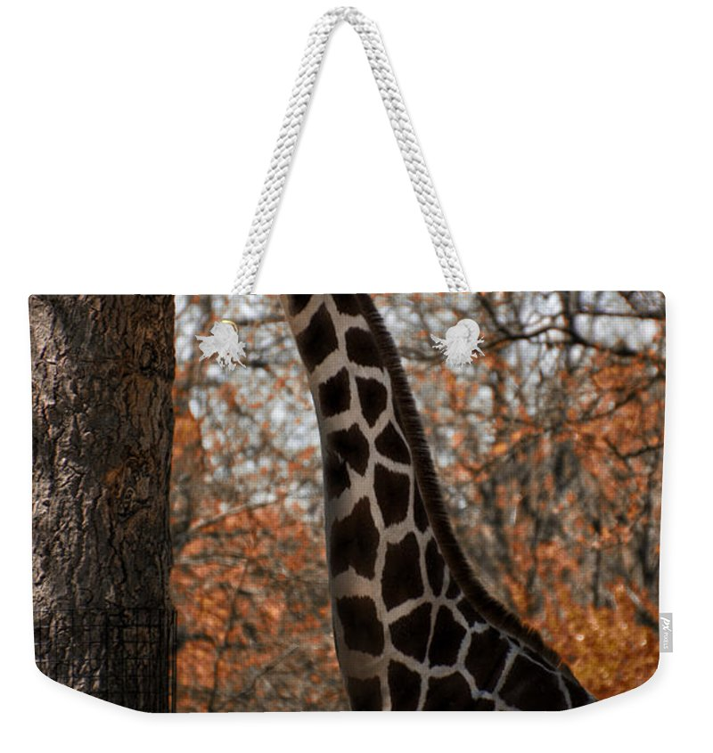 Giraffe Weekender Tote Bag featuring the photograph Giraffe Posing by Thomas Woolworth