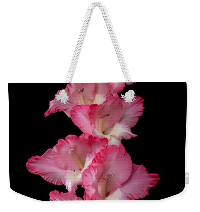 Gladiolus Weekender Tote Bag featuring the photograph Gladiolus by Timothy Loyd