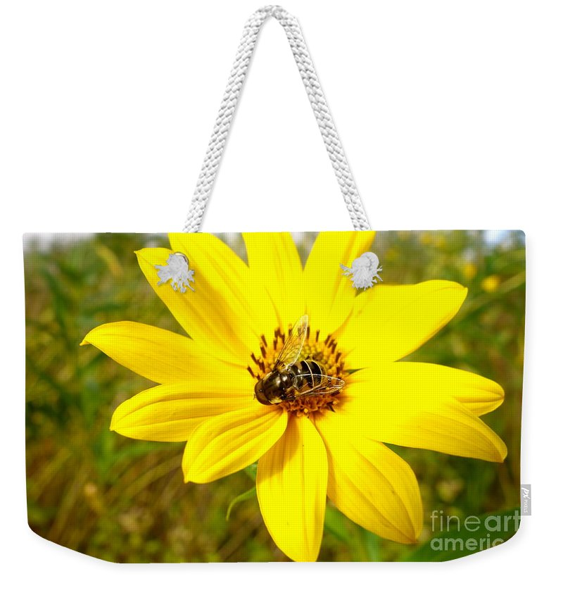 Flowers Weekender Tote Bag featuring the photograph Glass Wings by Jacqueline Athmann