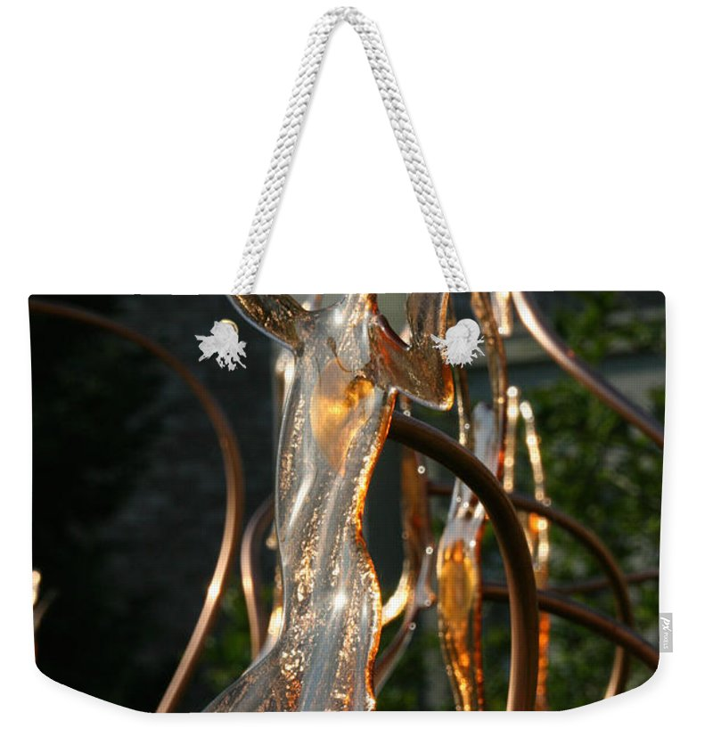 Glass Weekender Tote Bag featuring the photograph Glassy Lady by Susan Herber