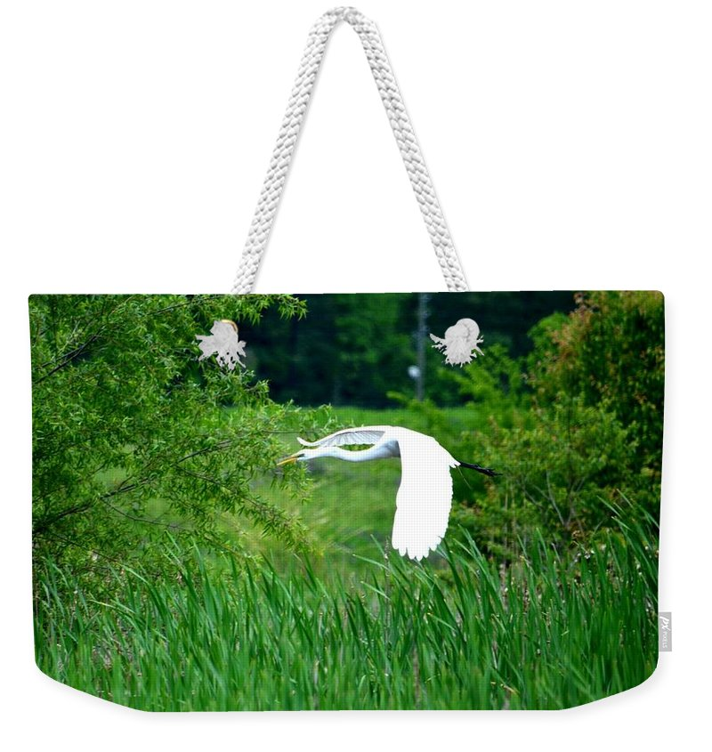 Gliding Egret Weekender Tote Bag featuring the photograph Gliding Egret by Maria Urso
