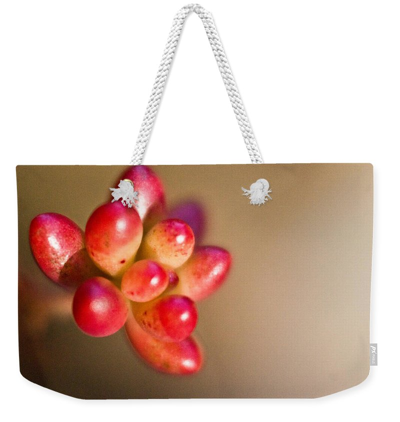 Sedum Weekender Tote Bag featuring the photograph Globules Of Sedum 1 by Douglas Barnett