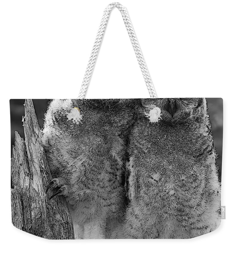 Great Horned Owl Weekender Tote Bag featuring the photograph Glow In The Dark by Barbara McMahon