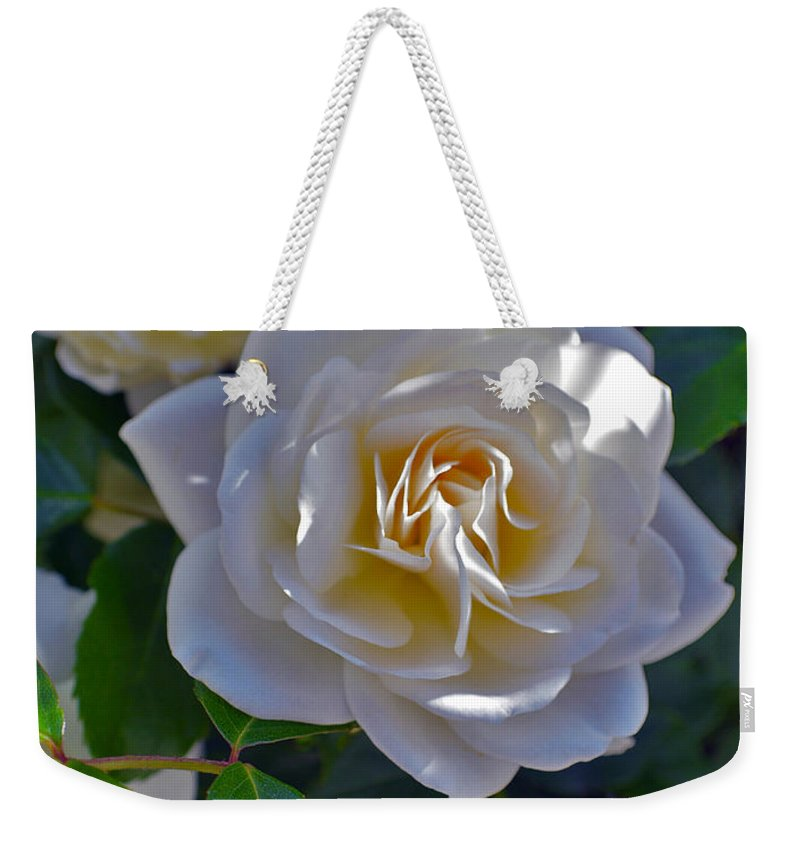 Iceberg Roses Weekender Tote Bag featuring the photograph Glowing Iceberg by Mayhem Mediums