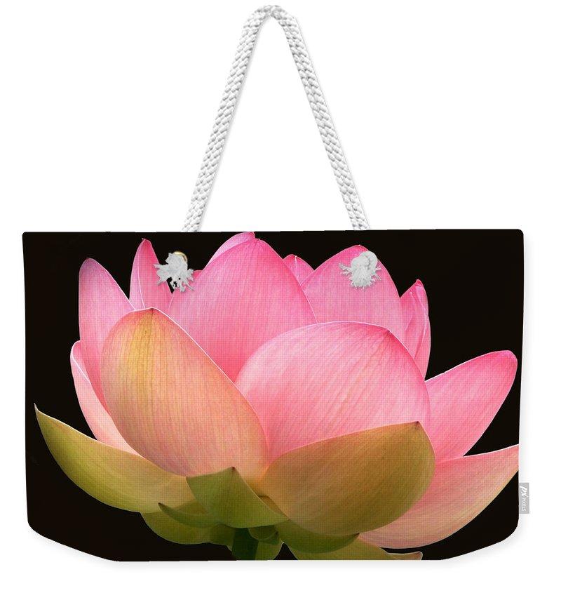 Glowing Pink Lotus Flower Weekender Tote Bag featuring the photograph Glowing Lotus Square Frame by Byron Varvarigos