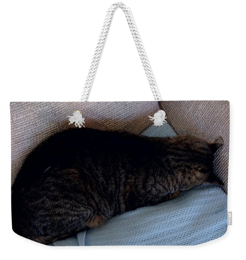 David S Reynolds Weekender Tote Bag featuring the photograph Go Away by David S Reynolds