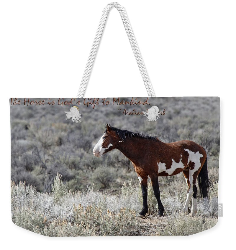 Gods Gift Weekender Tote Bag featuring the photograph God's Gift by Wes and Dotty Weber