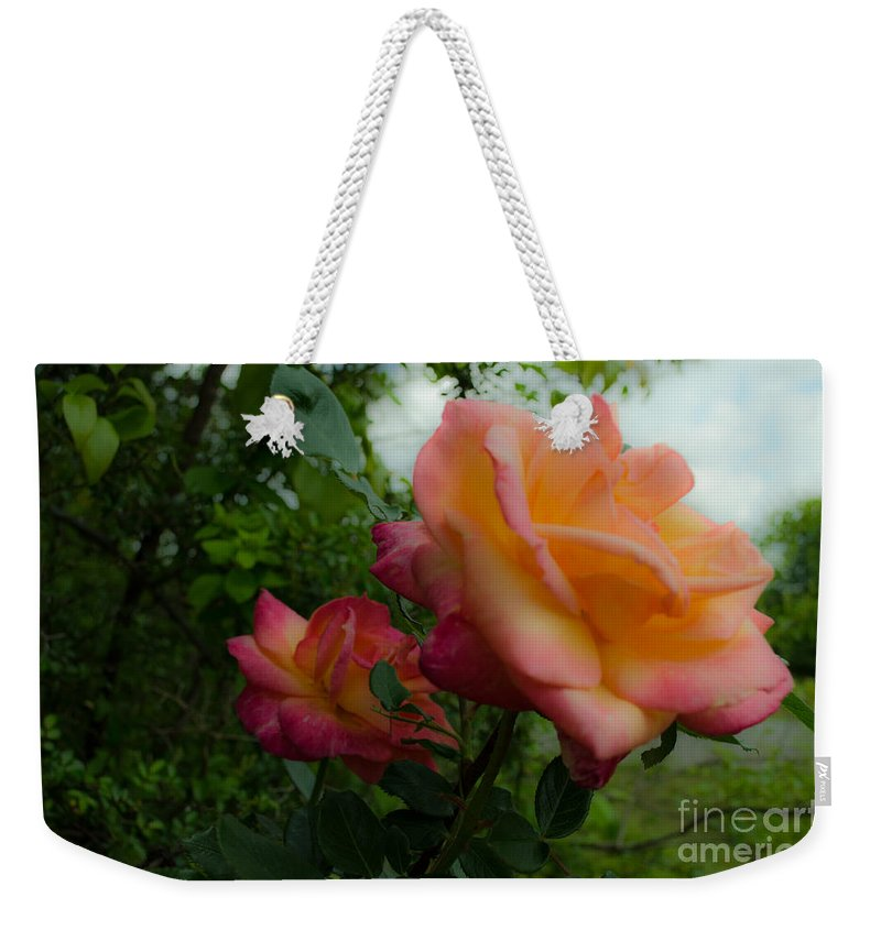 Flower Weekender Tote Bag featuring the photograph God's Roses by Donna Brown