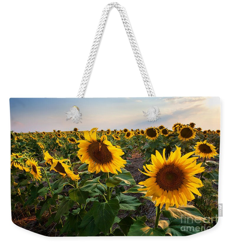 Flowers Weekender Tote Bag featuring the photograph Gold Medals by Jim Garrison