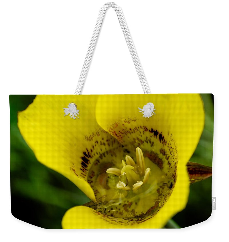 California Weekender Tote Bag featuring the photograph Gold Nugget Macro by Along The Trail