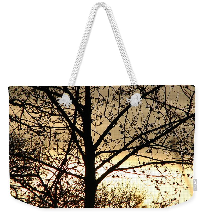 Trees Weekender Tote Bag featuring the photograph Gold Sunset by Roxy Riou