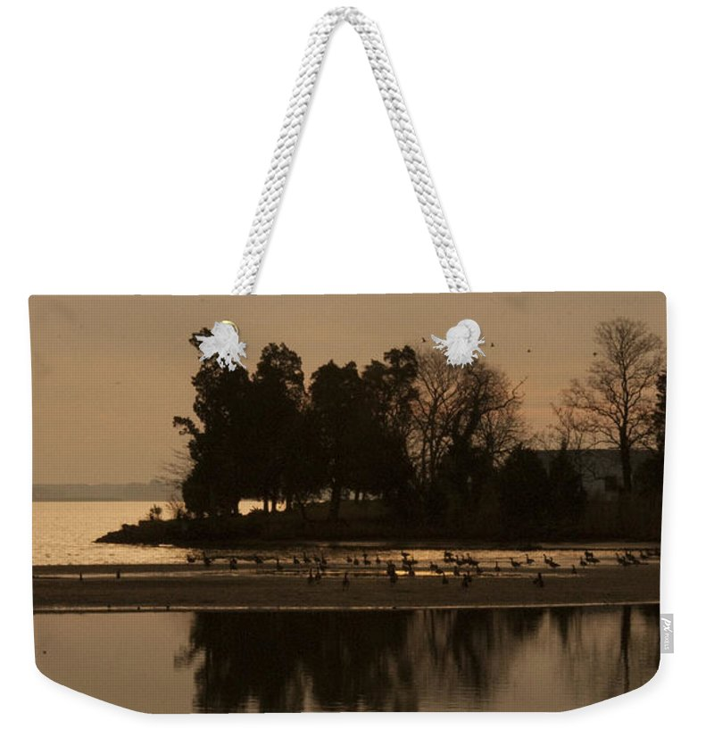 Golden Dawn Weekender Tote Bag featuring the photograph Golden Dawn by Bill Cannon