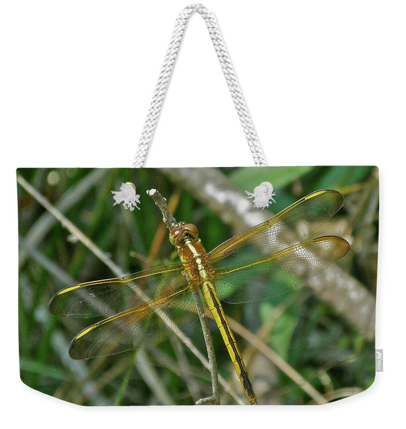 Dragonfly Weekender Tote Bag featuring the photograph Golden Dragonfly At Rest by Mother Nature
