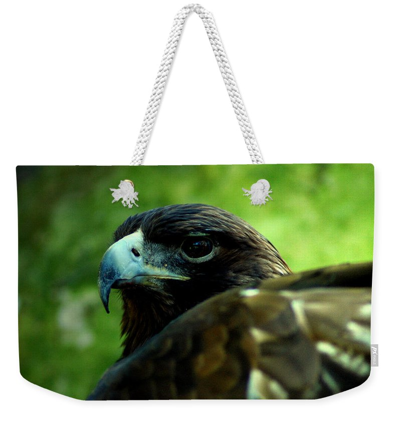 Bird Weekender Tote Bag featuring the photograph Golden Eagle by David Weeks