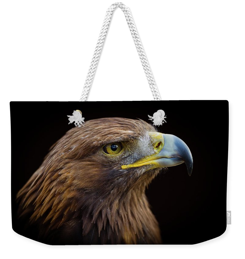 Alertness Weekender Tote Bag featuring the photograph Golden Eagle by Peter Orr Photography