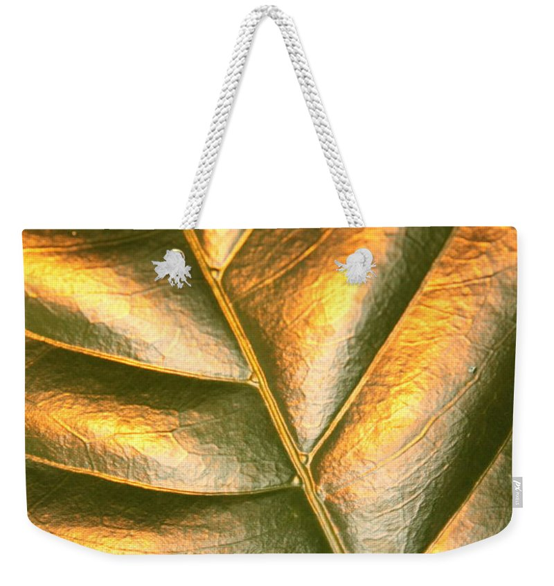 Gold Weekender Tote Bag featuring the photograph Golden Leaf 2 by Carol Groenen