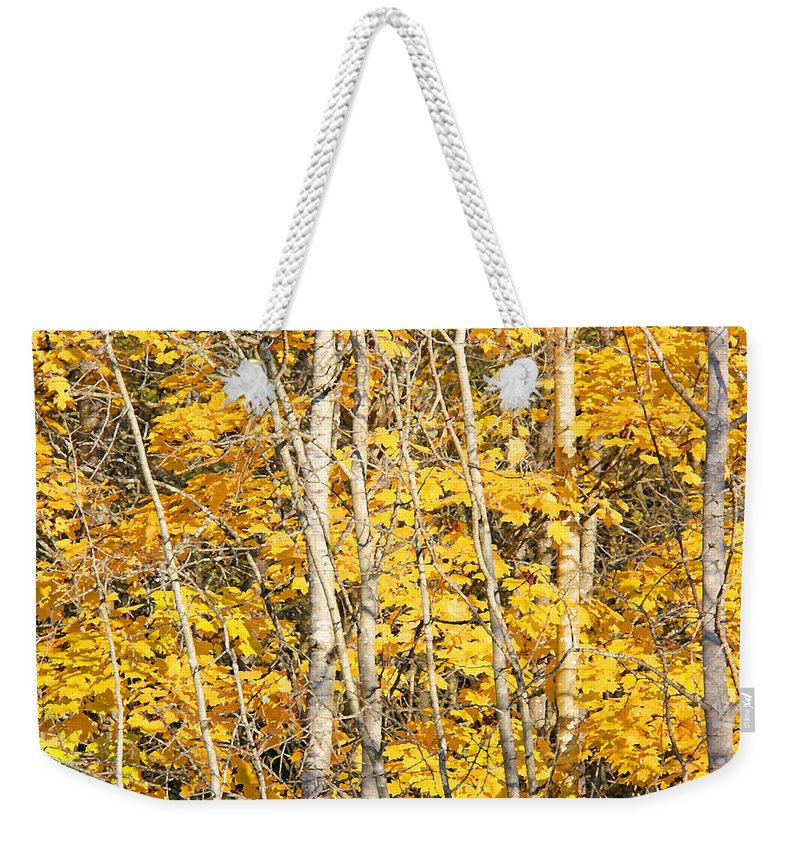 Leaf Weekender Tote Bag featuring the photograph Golden Leaves In Autumn Abstract by Jennie Marie Schell