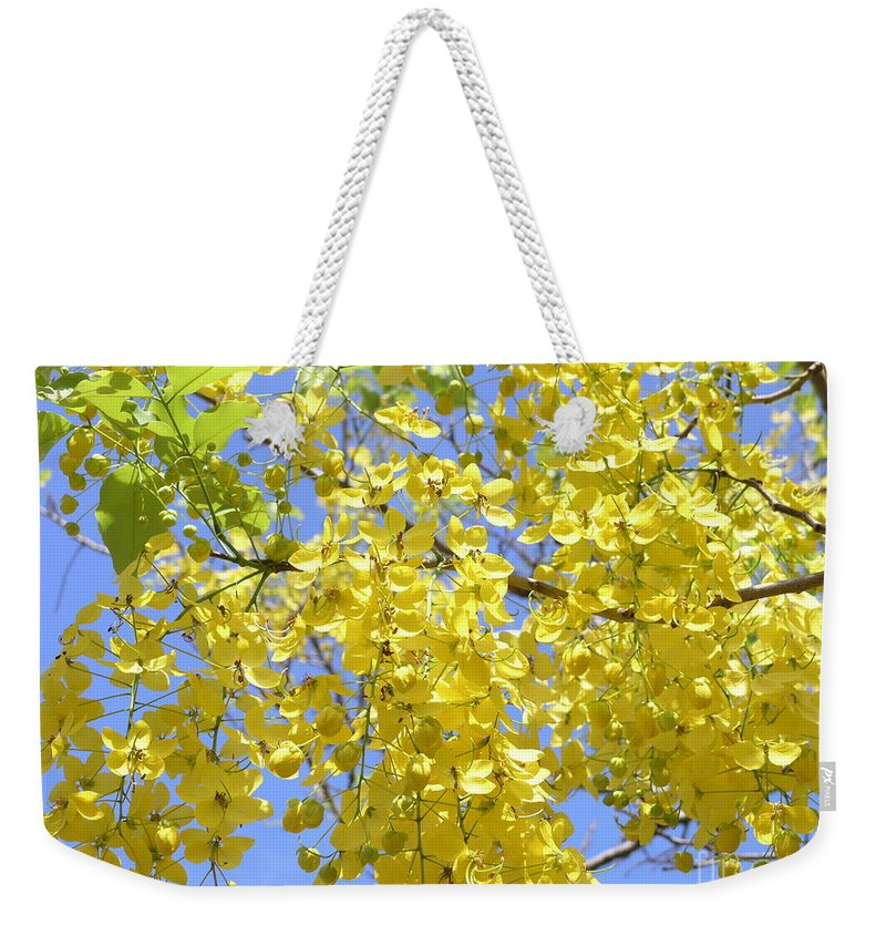 Yellow Weekender Tote Bag featuring the photograph Golden Medallion Shower Tree by Mary Deal