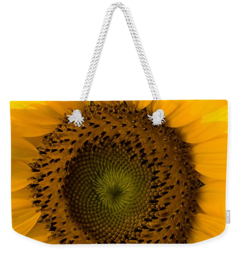 Flower Weekender Tote Bag featuring the photograph Golden Petals by Ed Gleichman